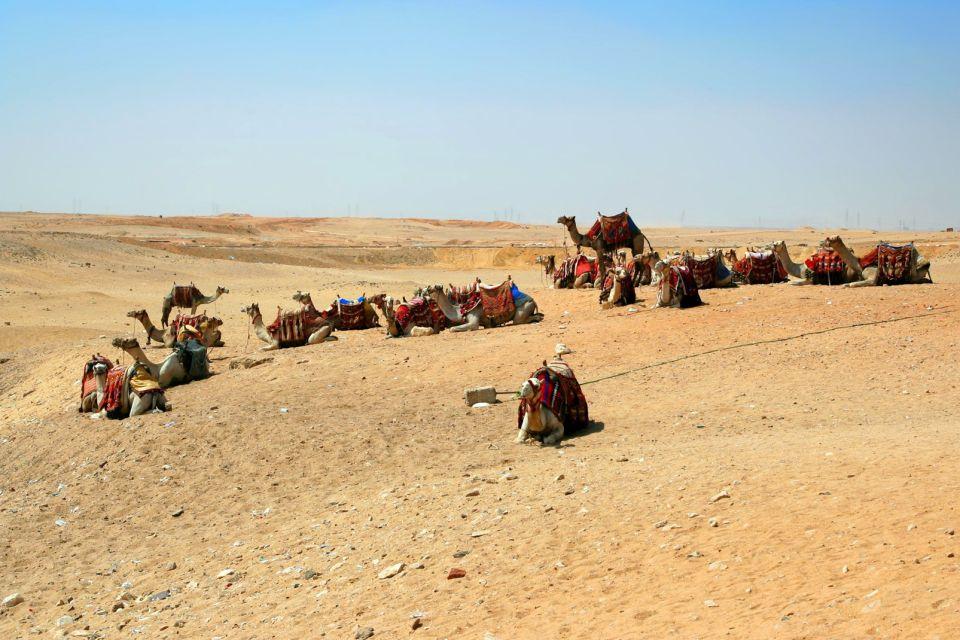 El desierto, Los paisajes, Bahrein