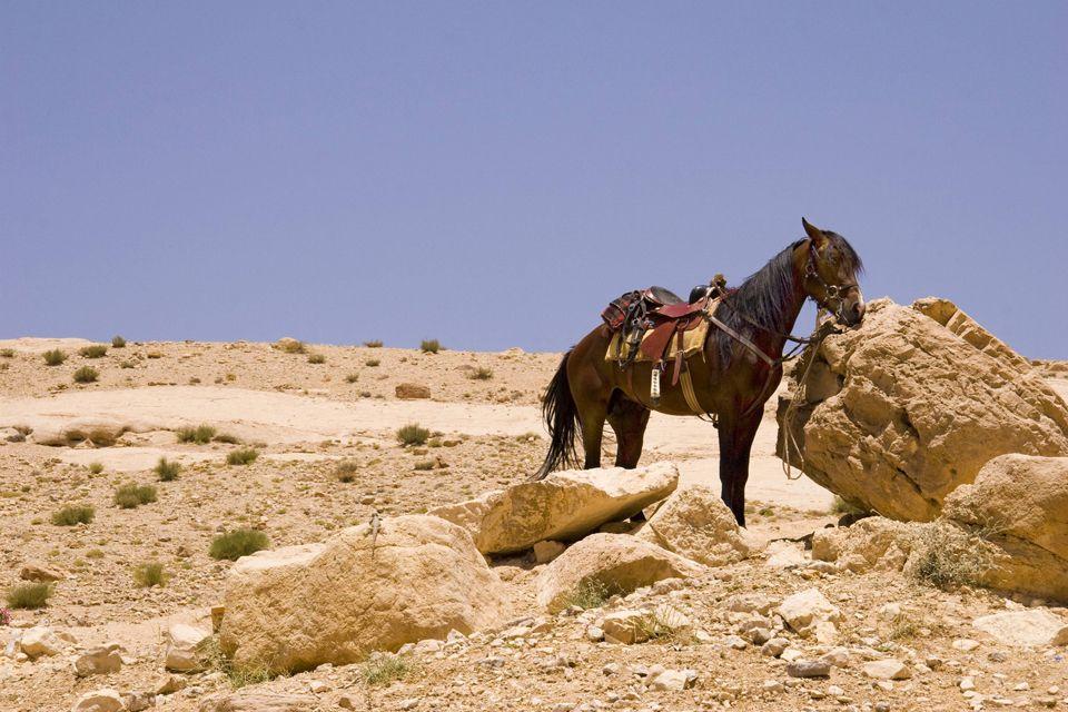 , El desierto, Los paisajes, Bahrein