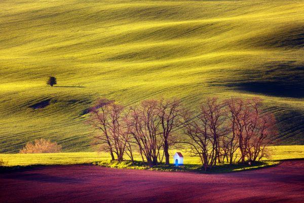 Olomouc city park, Czech Republic., Moravia, Landscapes, Czech Republic