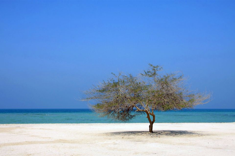 Las islas, Los paisajes, Bahrein