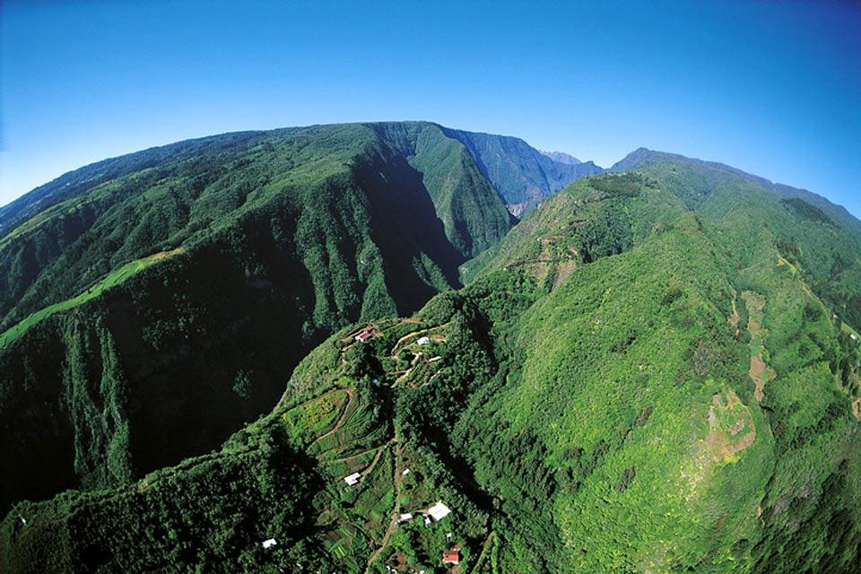 Die endemische Vegetation der Hochebenen ?Hauts? , Réunion