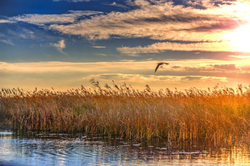 Tramonto sul delta del Danubio, Il delta del Danubio, I paesaggi, Romania