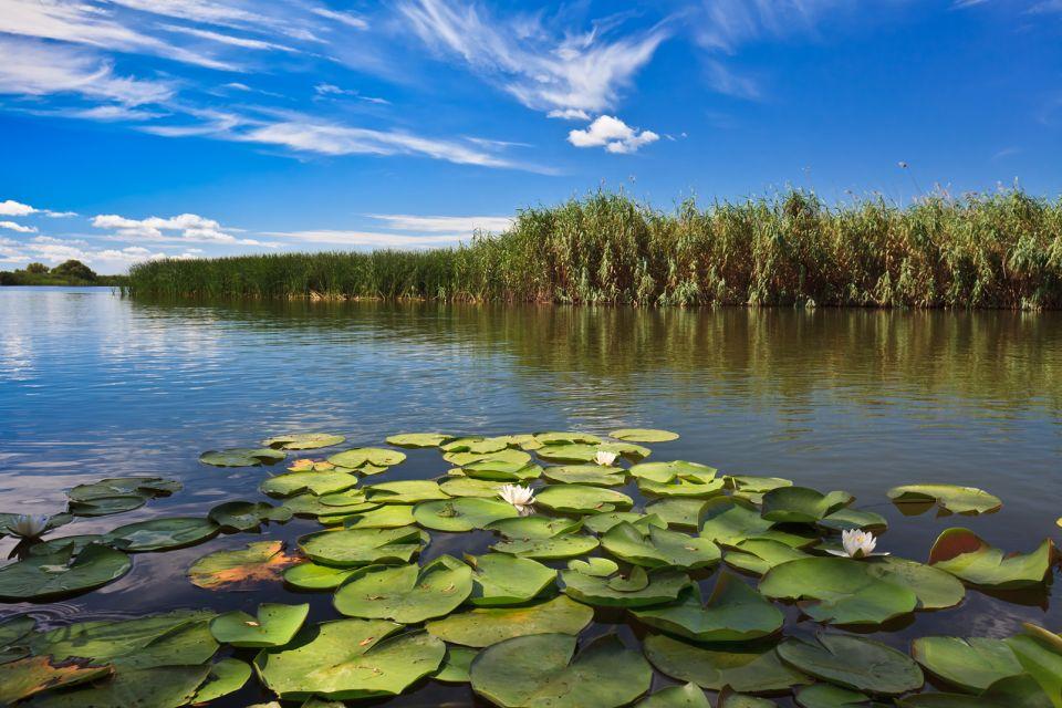 Grandi pellicani bianchi sul lago Danubio, Il delta del Danubio, I paesaggi, Romania