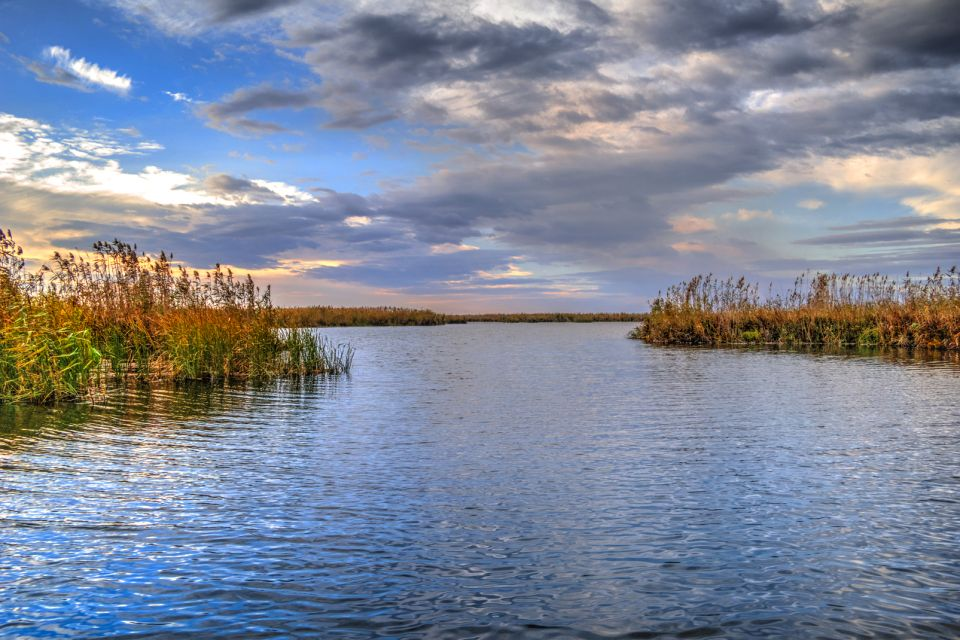 A gathering point for many birds, The Danube delta, Landscapes, Romania