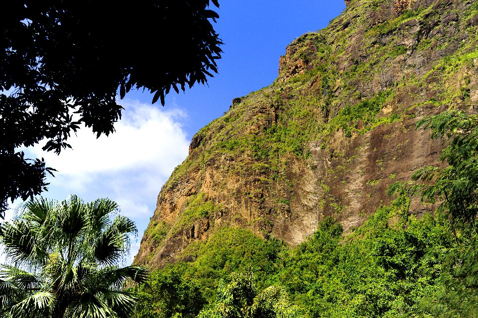 The Pitons , Climbing the two Pitons. , St Lucia