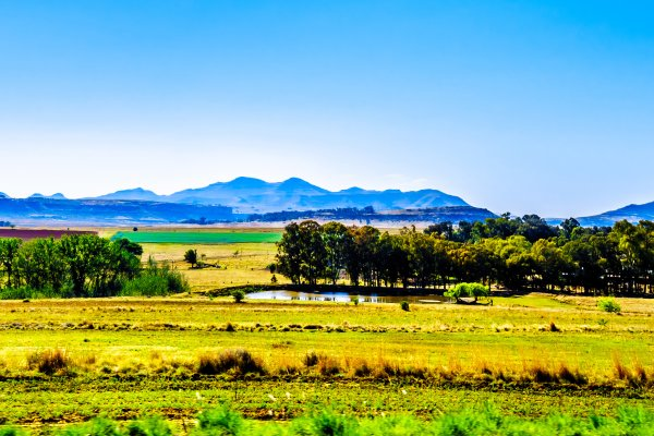 The Eastern Cape , The cities of Free State , South Africa