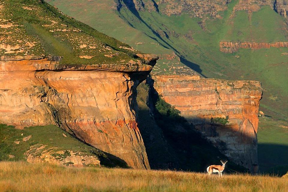 Le Free State , Le sol du Free State , Afrique du Sud