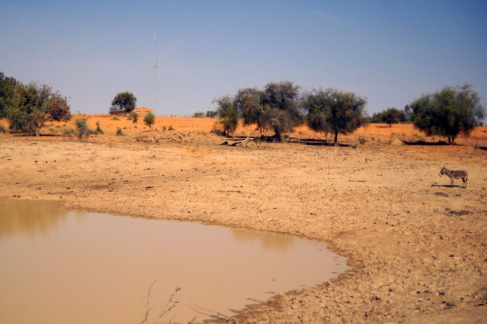, Die Wüste Ferlo, Die Landschaften, Senegal