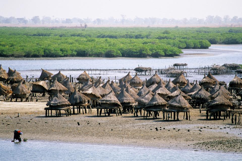 Il delta del Sine-Saloum, I paesaggi, Dakar, Senegal