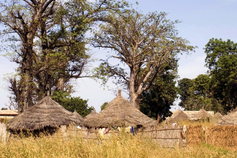 Il delta del Sine-Saloum , Villaggio del Sine-Saloum , Senegal