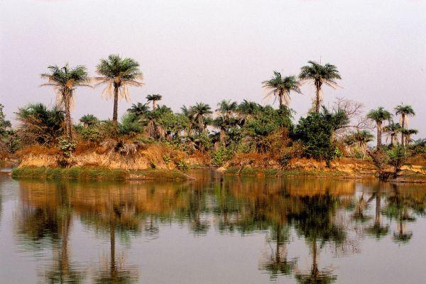 Les paysages, casamance, afrique, sénégal