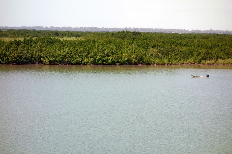 Piroga della Casamance, La Casamance, I paesaggi, Senegal