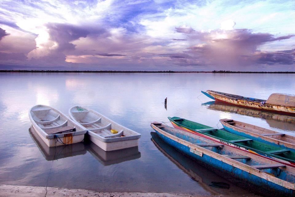 Il ponte Faidherbe, Il fiume Senegal, I paesaggi, Senegal