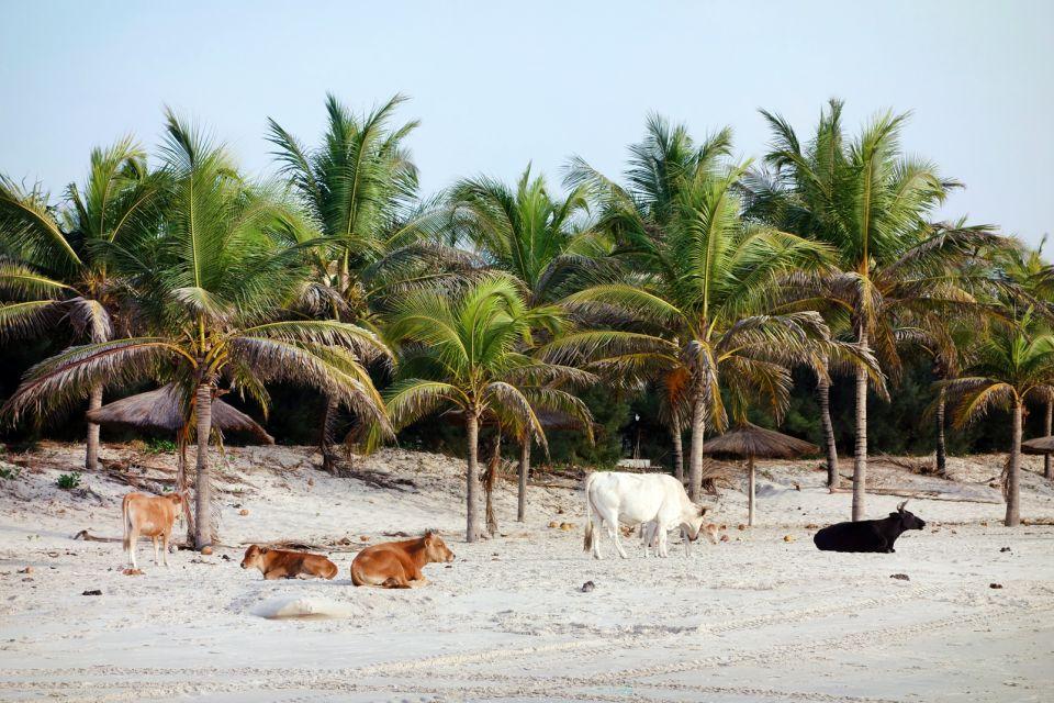 Die Strände von Cap Skirring, Cap Skirring, Die Küsten, Senegal