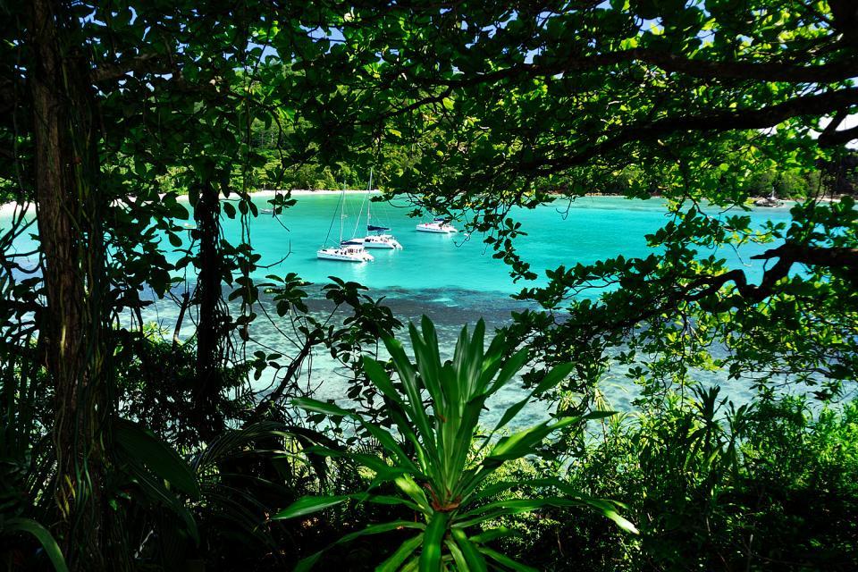 Mahé , Una exuberante vegetación , Las Seychelles