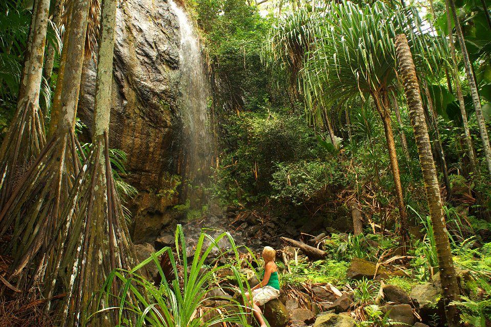 La Vallée de Mai (Praslin) , Halte au pied d'une cascade , Seychelles