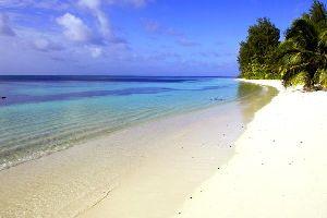 Les îles éloignées , Seychelles