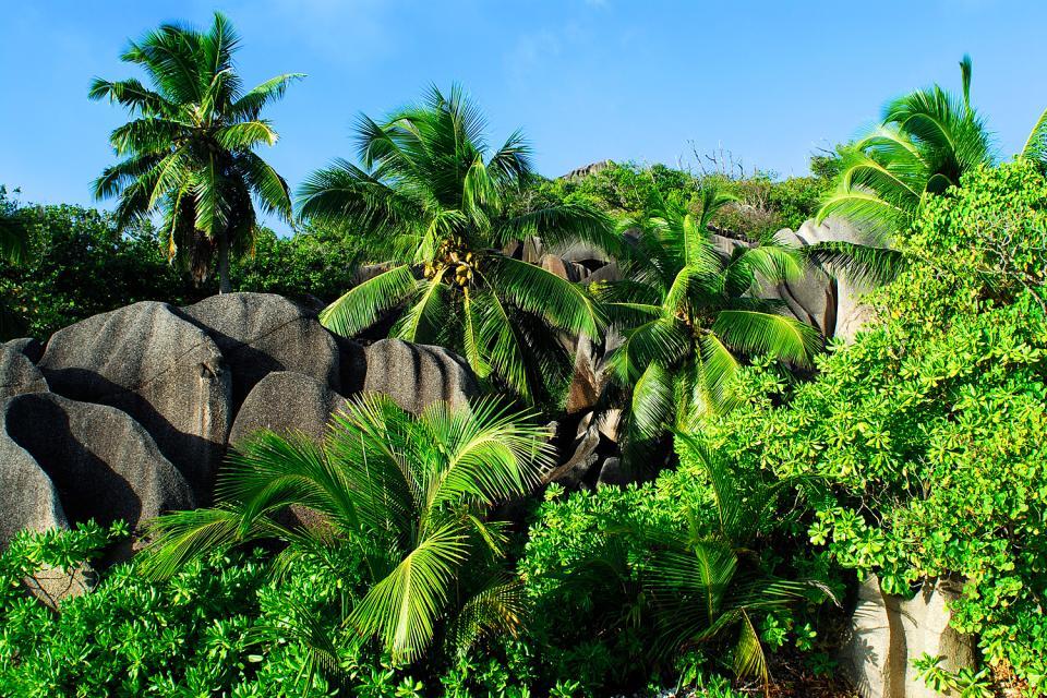 La Digue , Una isla que ha permanecido salvaje , Las Seychelles