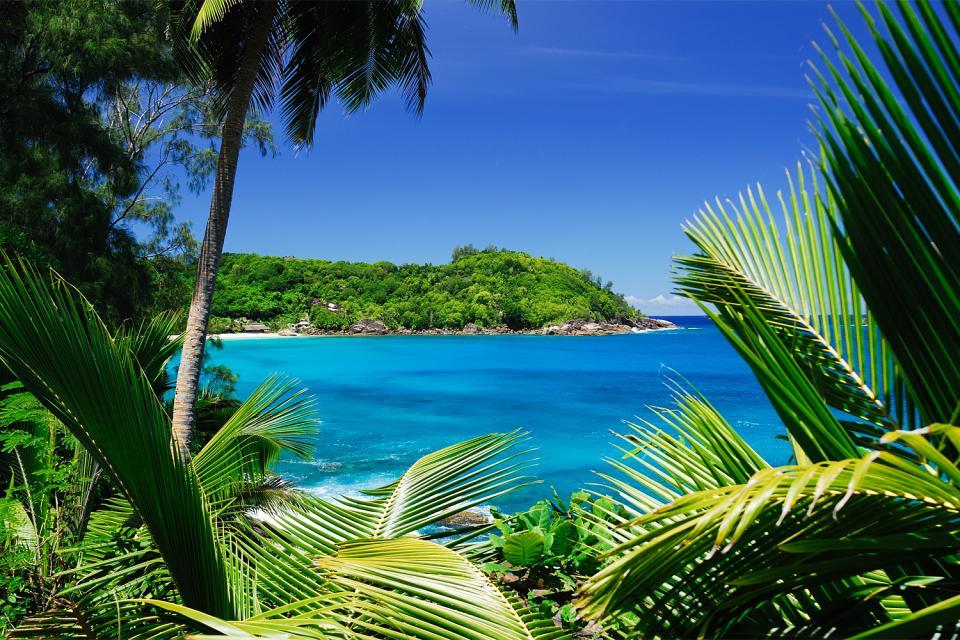 Mahé , Las ensenadas , Anse à la Mouche , Las Seychelles