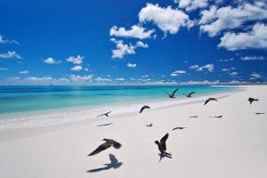 Les paysages, Seychelles, Océan indien, afrique