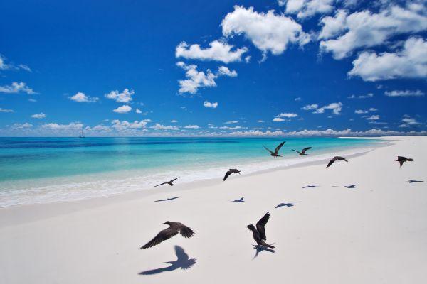 Bird Island, Die Insel Bird, Die Landschaften, Mahé, Seychellen
