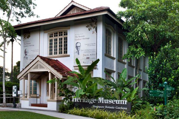 , The botanic gardens, Nature Reserves and gardens, Singapore