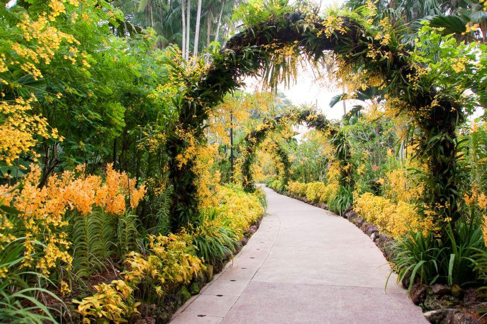 Les jardins botaniques singapour for Jardin botanique singapour
