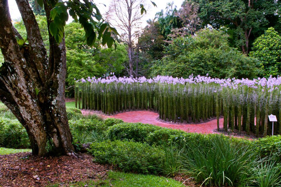 Les jardins botaniques singapour for Jardin botanique gratuit 2015