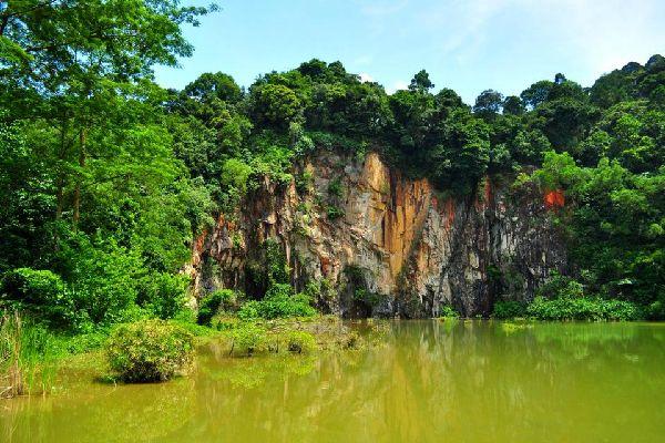 La riserva naturale di Bukit Timah , Singapore