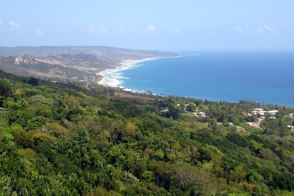The relief , Barbados