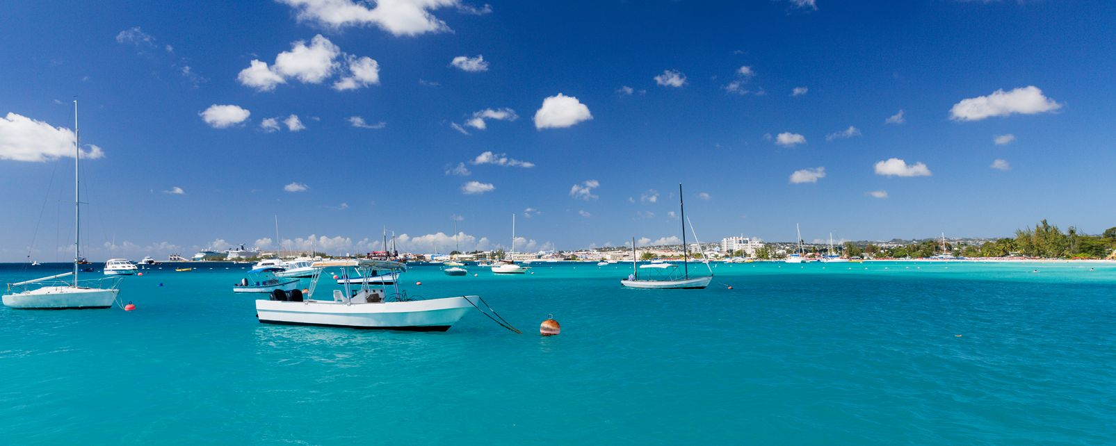 Les côtes, Barbados, barbade, antilles, amérique, caraïbes, mer