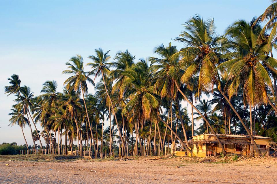 La côte Est , La côte orientale du Sri Lanka , Sri Lanka