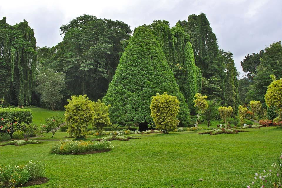 Les jardins botaniques et les jardins d'épices , Sri Lanka
