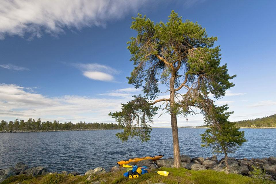 The nature reserves , A natural paradise , Sweden