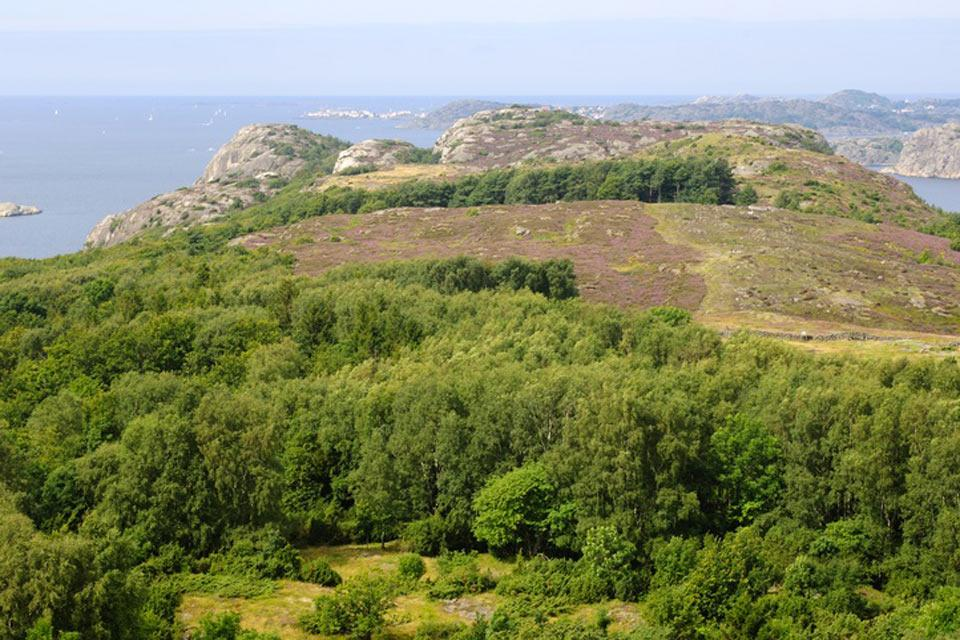 The nature reserves , The Swedish coast , Sweden