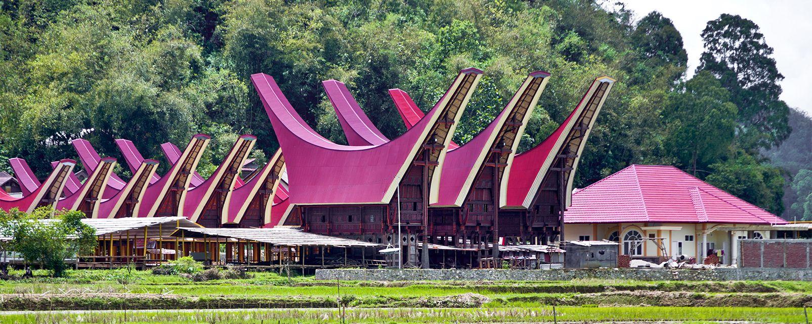 Le pays Toraja , Tana Toraja, Sulawesi, Indonésie , Indonésie