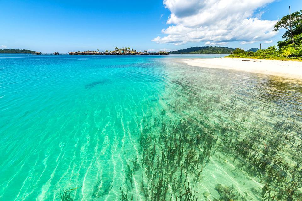 Les sites de plong e sulawesi indon sie - Prix plongee bali ...