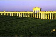 The city of Apamea , Apamea, the Cardo Maximus , Syria
