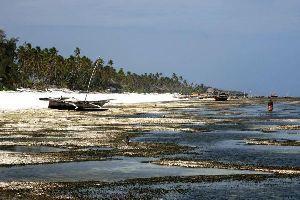 Les sites côtiers , Jour d'orage à Matemwe , Tanzanie