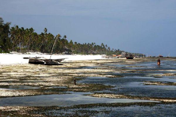 Le località costiere , tempesta a Matemwe , Tanzania