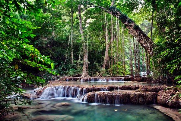 The central plain, Landscapes, Thailand