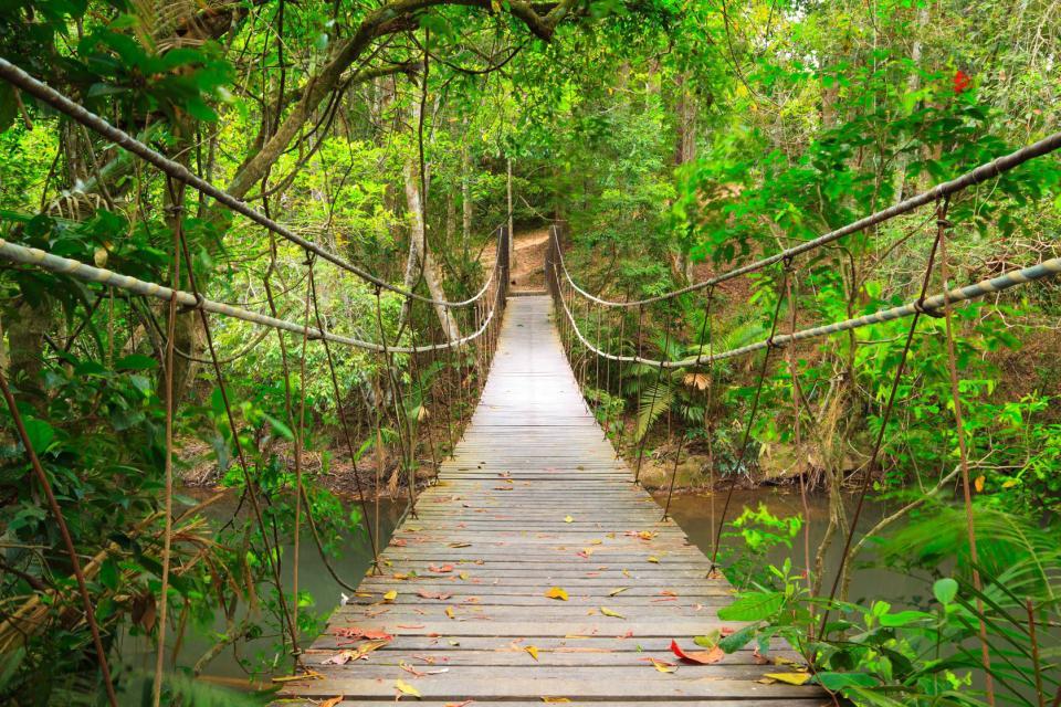 Khao Yai Park , The summits of Khao Yai, Thailand , Thailand
