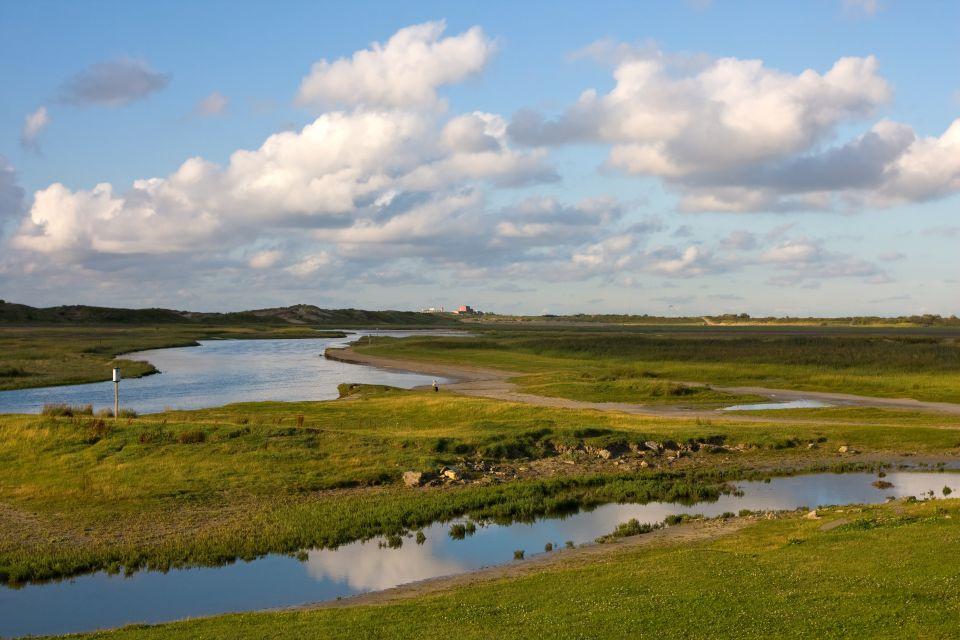 Auch Enten leben hier., Das Zwin-Naturschutzgebiet, Die Küsten, Belgien