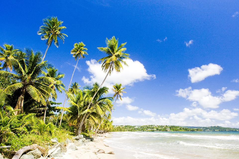 Tobago, lugar de sol y playa , Trinidad y Tobago