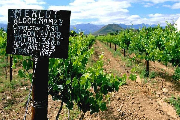 The 'Route des Vins' (the wine road) , Franschhoek Valley , South Africa