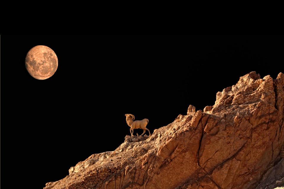 El Atlas , Cadena montañosa del Atlas , Túnez