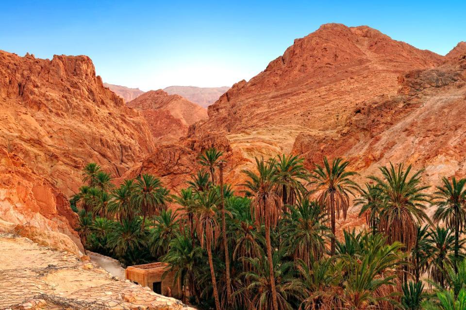 El Atlas , Montañas alrededor de Chebika , Túnez