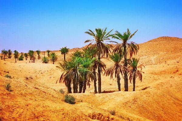 Die Wüste , Die Sahara-Wüste , Tunesien