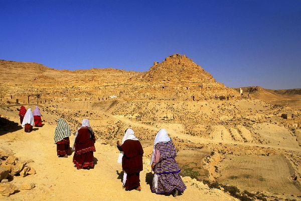 Die Wüste , Oase in der Sahara. , Tunesien
