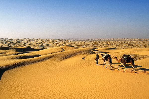 Le désert tunisien , Désert de Douz, erg oriental , Tunisie